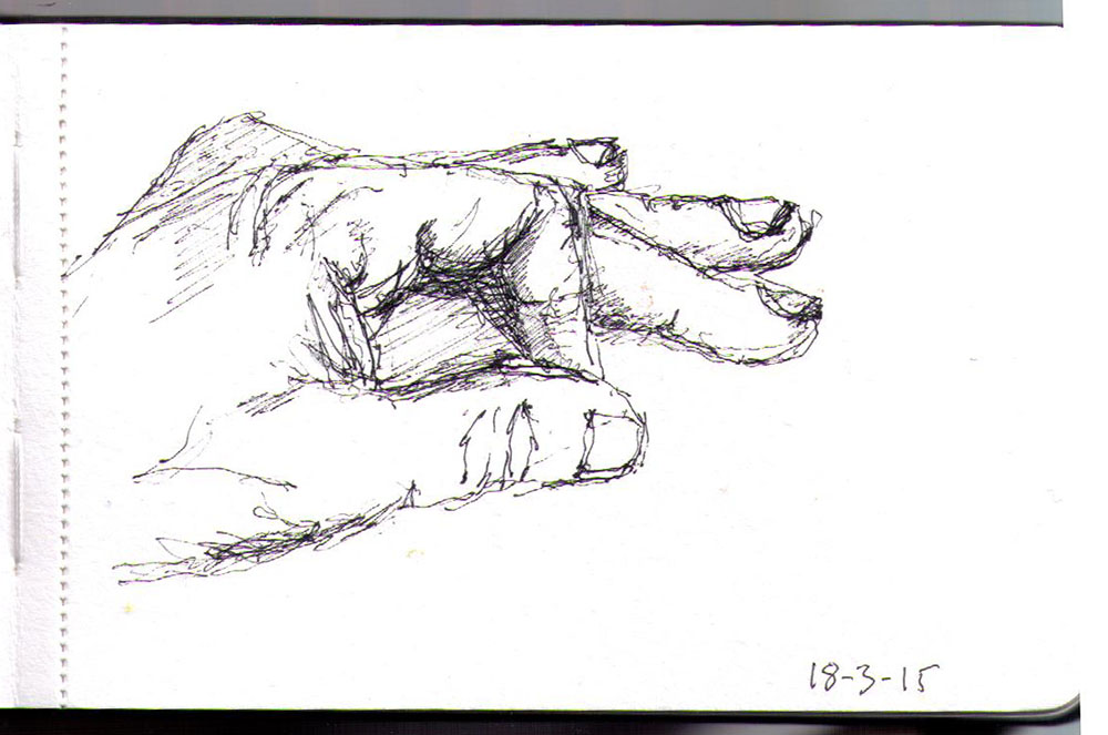 Drawing of my hand in ballpoint pen