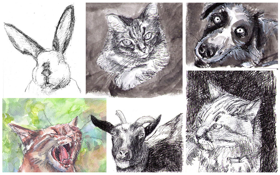 I'll sketch your pet for free