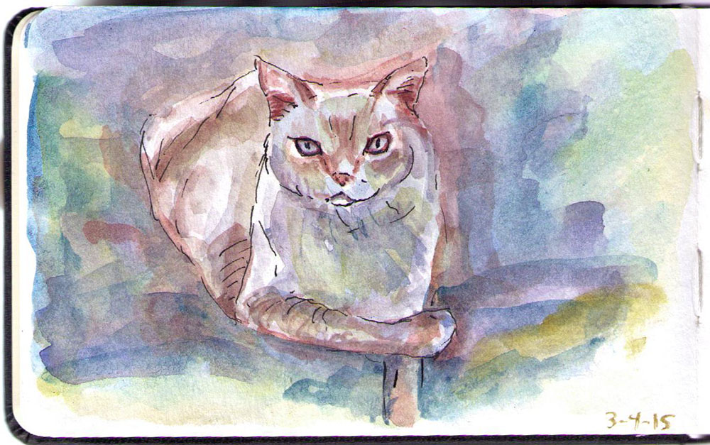 Drawing of Kali the cat in watercolor and ballpoint pen