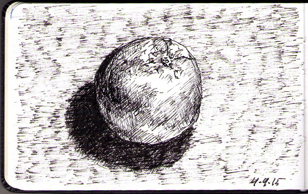Drawing of an orange in ballpoint pen
