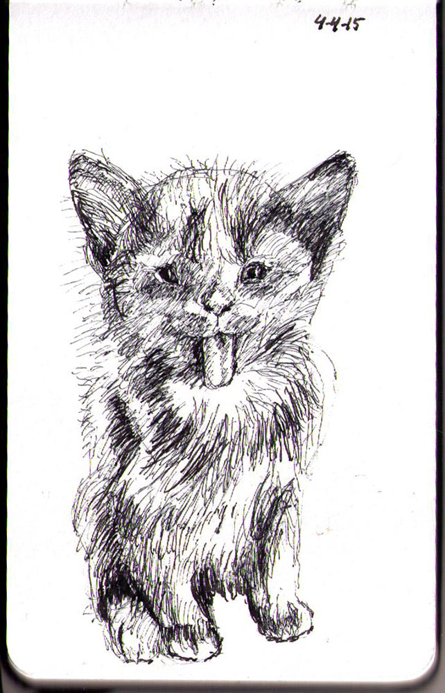Drawing of dust bunny the cat in ballpoint pen