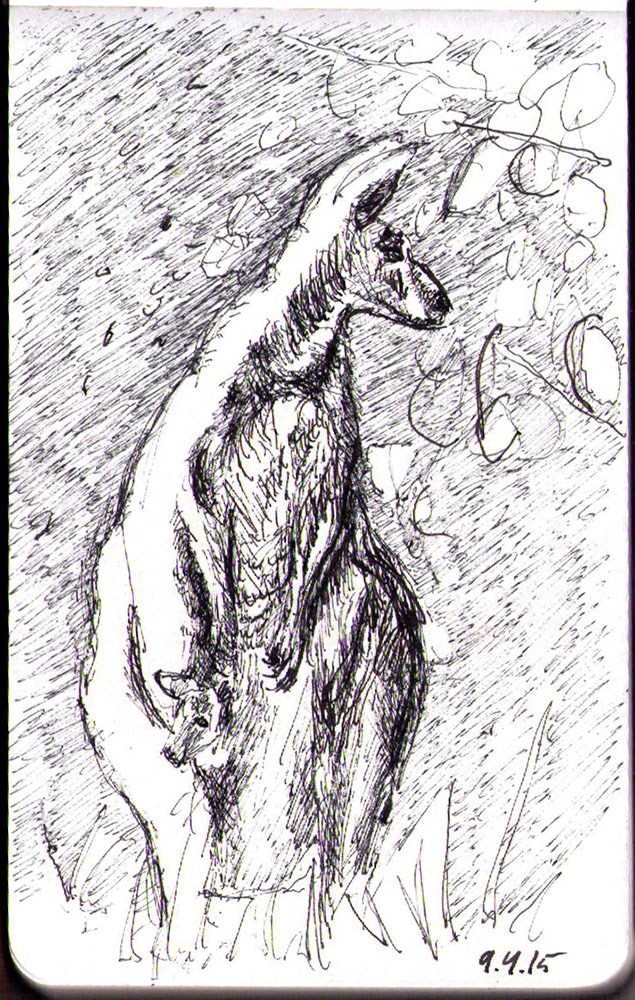 Sketch of a kangaroo and her Joey (baby) in ballpoint pen