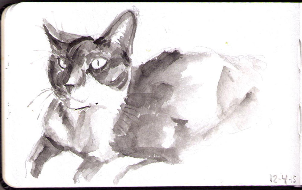 Drawing of Keisha the cat in india ink