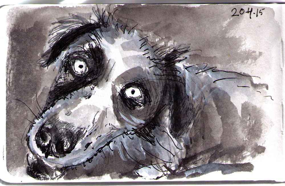 Drawing of Fenris the dog in ballpoint pen, india ink and goache