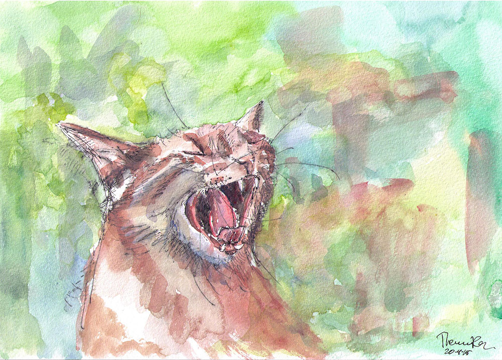 Painting of waffles the cat in ballpoint pen and watercolor