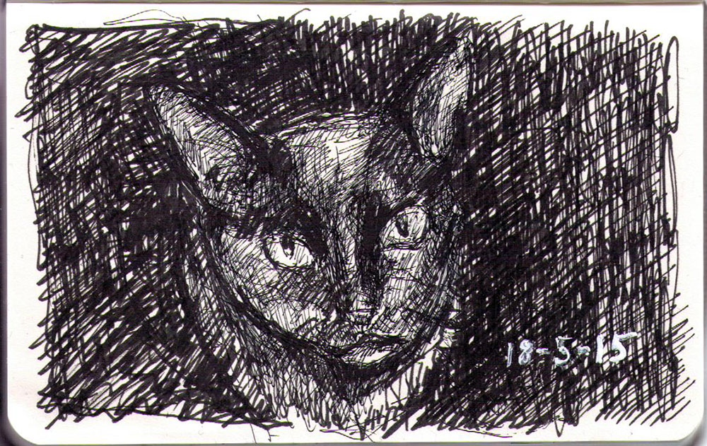 A cat drawn in ballpoint pen