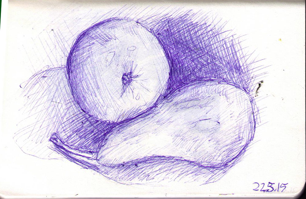 Drawing of an apple and a pear in big ballpoint pen