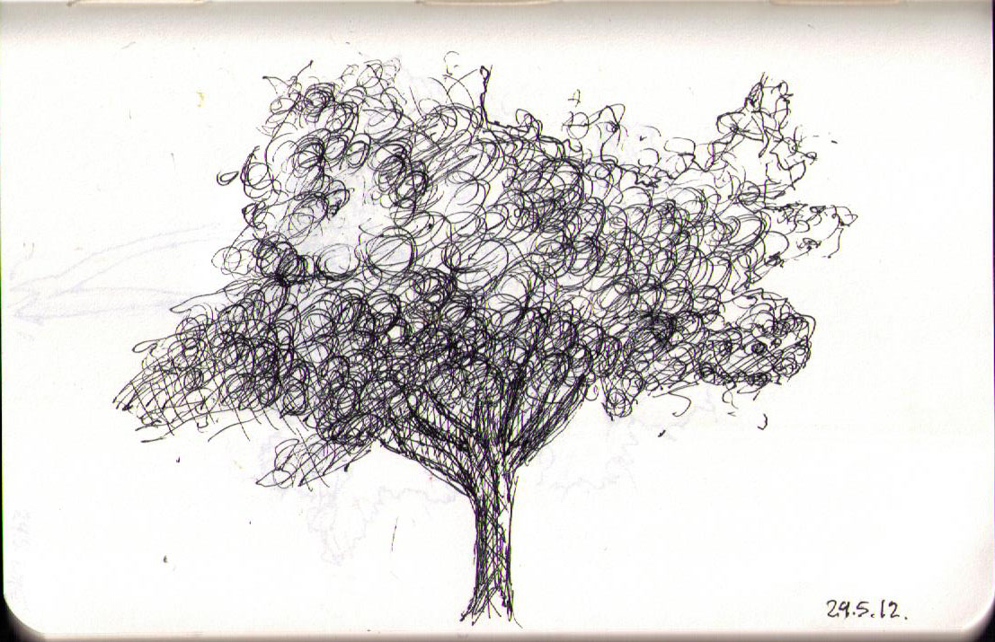 thomas-dalsgaard-clausen-2015-05-24c drawing of a tree in ballpoint pen