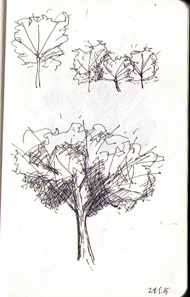 thomas-dalsgaard-clausen-2015-05-24g drawing of a tree in ballpoint pen
