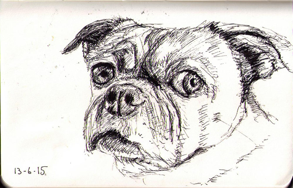 Drawing of a dog in balpoint pen