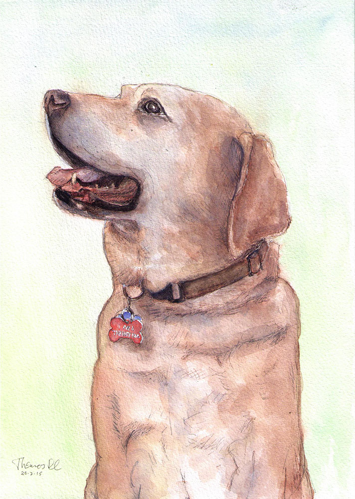 Commissioned portrait of a dog called Liberty in watercolor and ballpoint pen