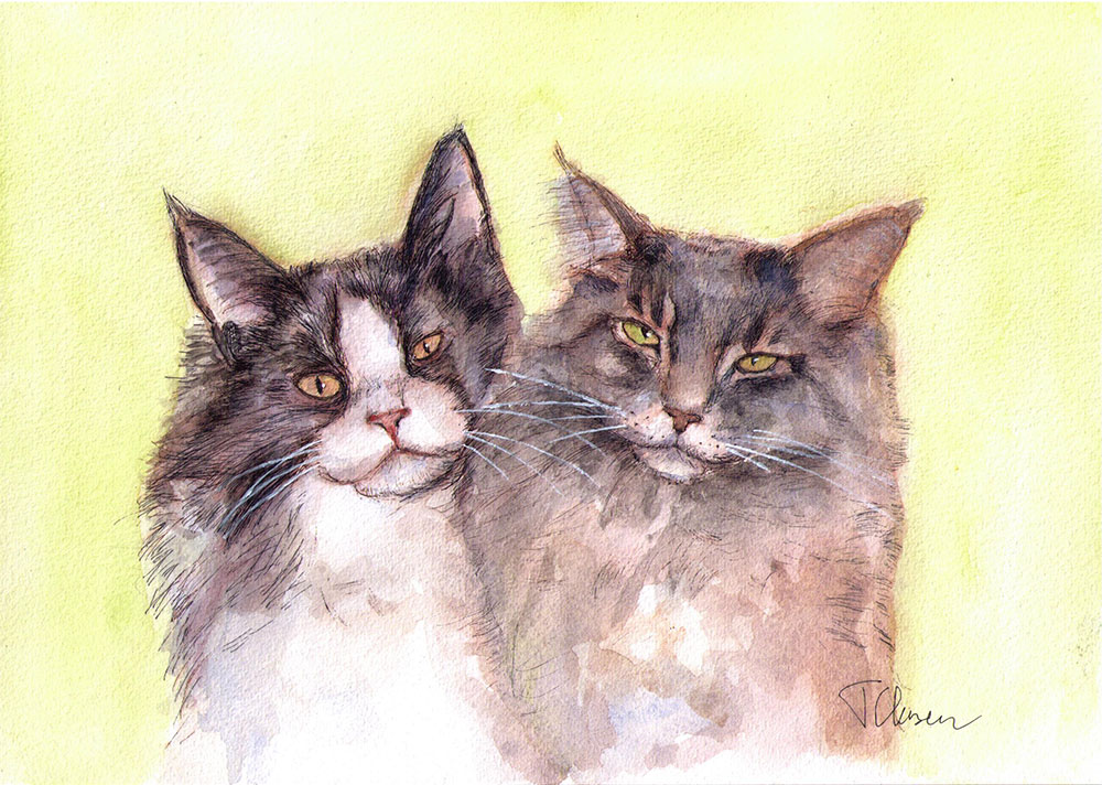 Commissioned drawing of two cats in ballpoint pen and watercolor