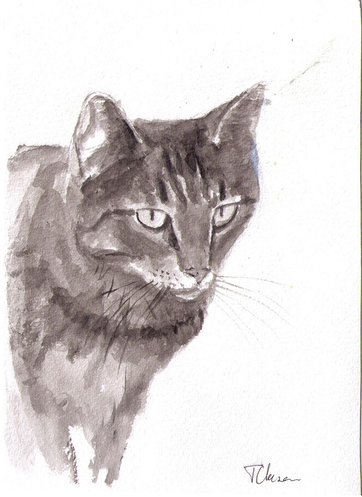 Drawing of a cat called Albert in india ink