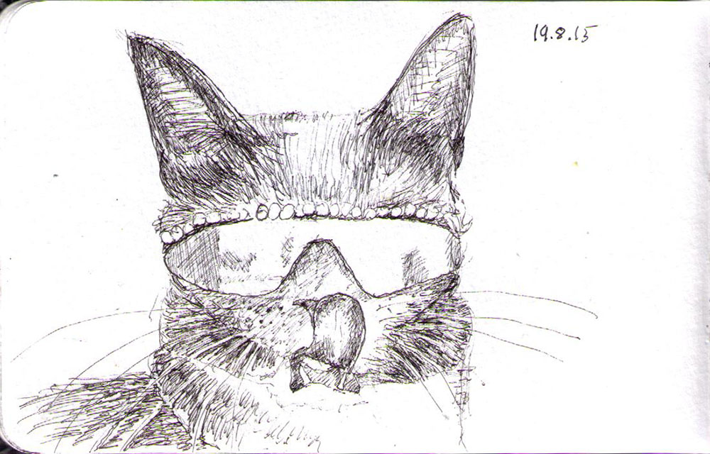 Drawing of a cat wearing sunglasses in ballpoint pen