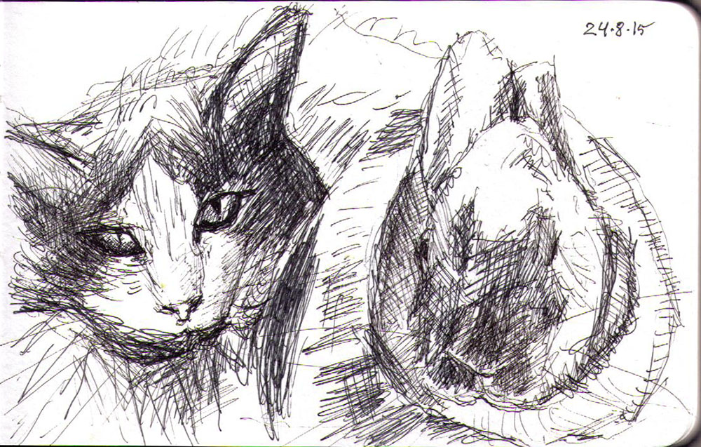 Drawing of a cat and a bunny in ballpoint pen
