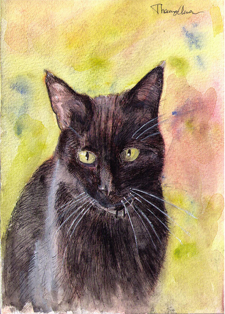 Drawing of a cat in ballpoint pen and watercolor