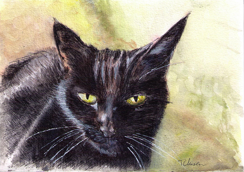 Commissioned portrait of a cat in watercolor and ballpoint pen