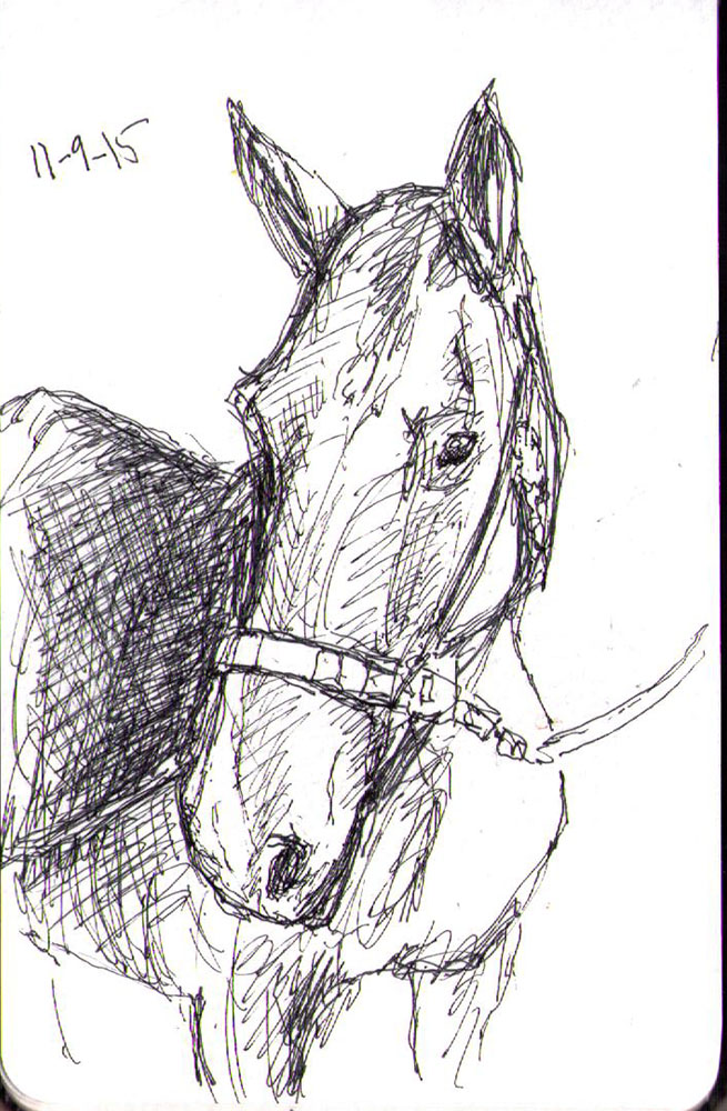 Drawing of a horse in ballpoint pen