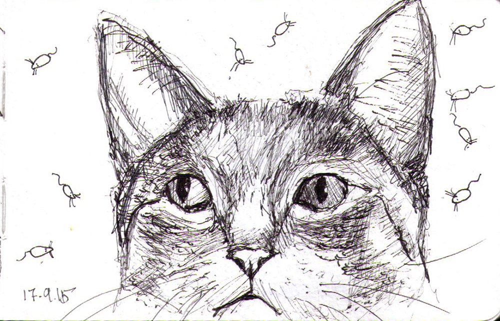 Drawing of a cat sorrounded by mice
