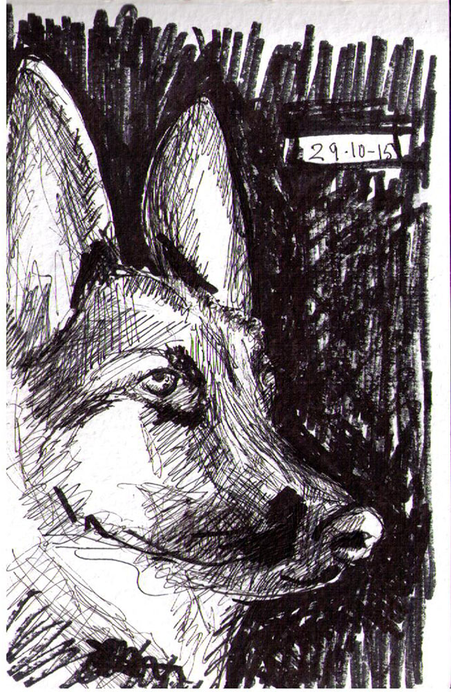Drawing of a dog in pen