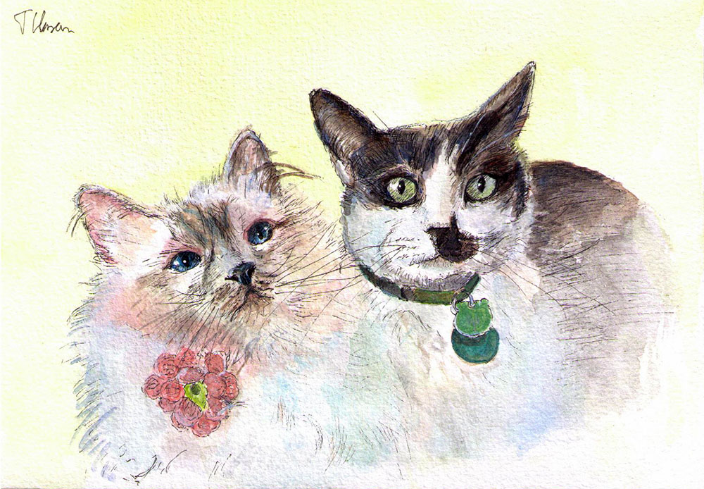 Commissioned drawing of two cats in watercolor and pen