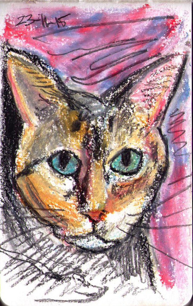 oil pastel sketch of a cat