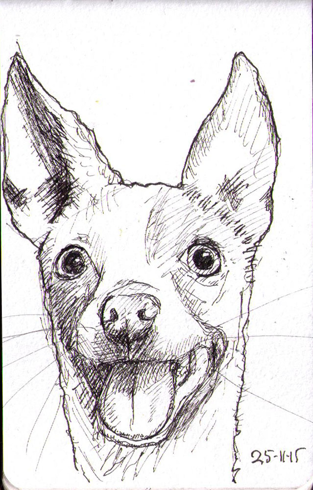 thomas-dalsgaard-clausen-2015-11-25b sketch of a silly dog