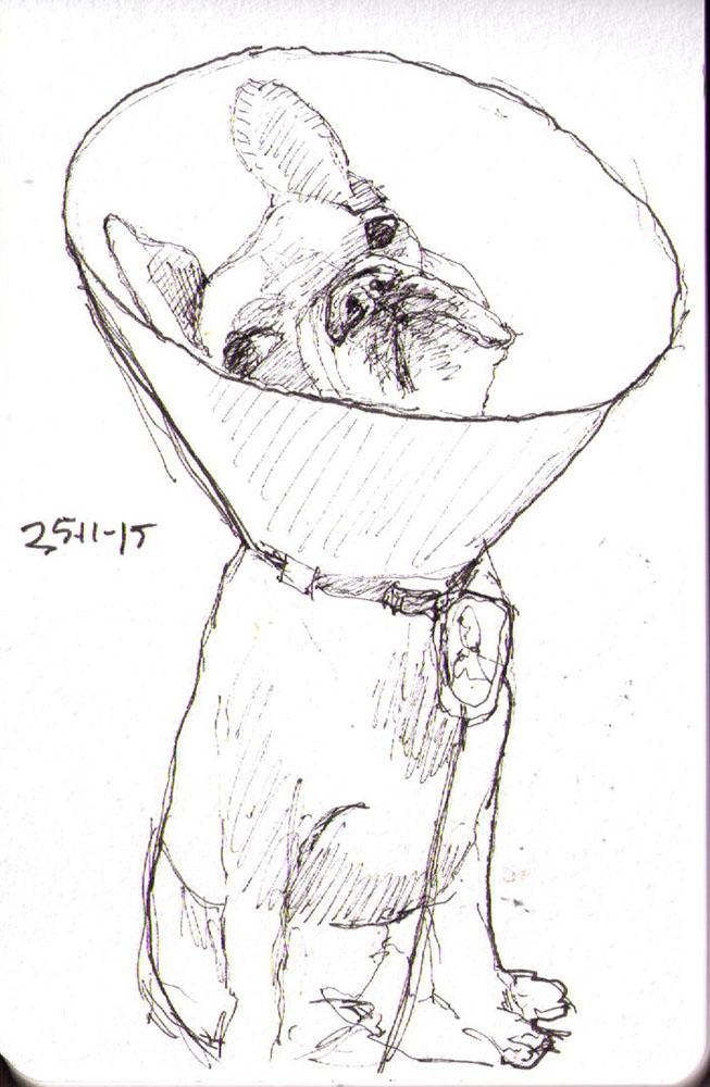 thomas-dalsgaard-clausen-2015-11-25e sketch of a dog wearing a lamp screen pen.jpg