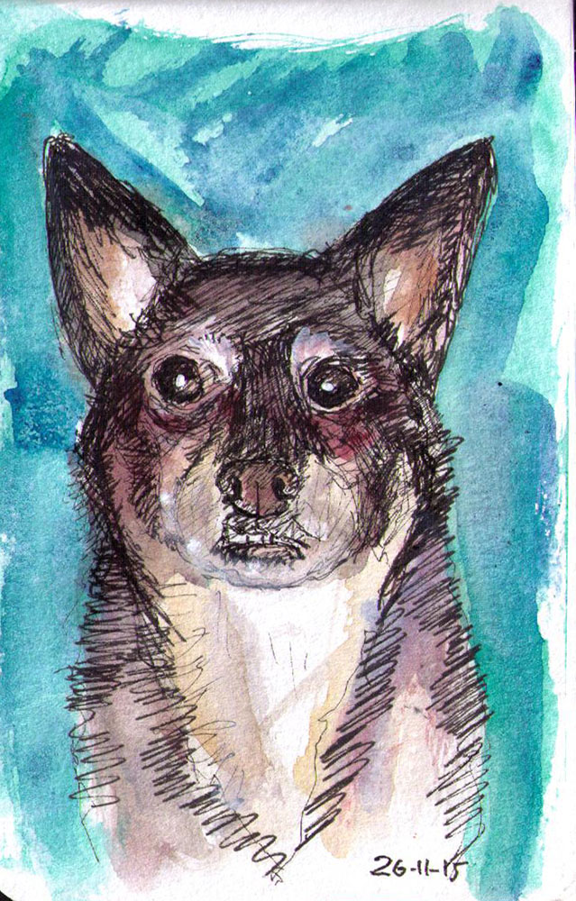 thomas-dalsgaard-clausen-2015-11-26e sketch of a dog in pen and watercolor