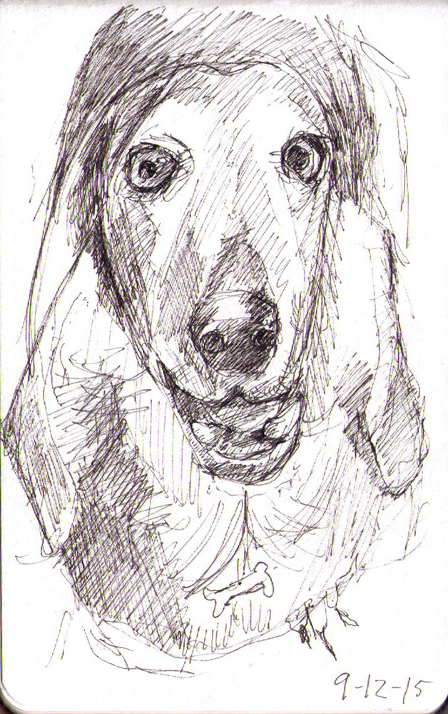 thomas-dalsgaard-clausen-2015-12-09a sketch of a dog in pen