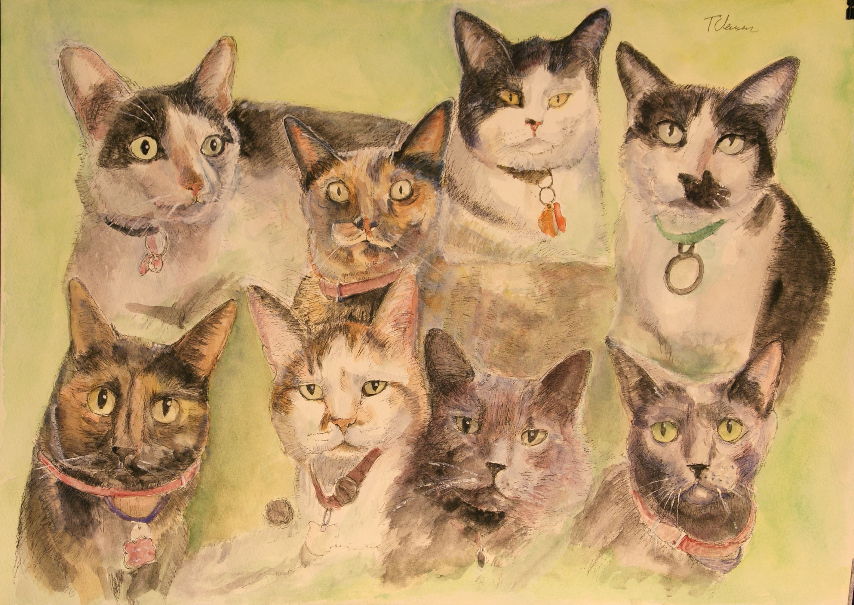 thomas-dalsgaard-clausen-2015-12-15a portrait of 8 cats.jpg
