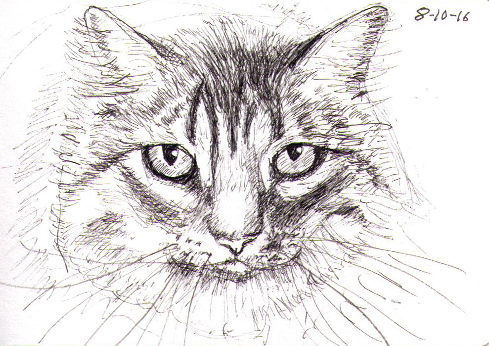 thomas-clausen-2016-10-08a-cat-pen